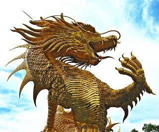 dragon_320
